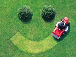 Lawn Care in Torrance